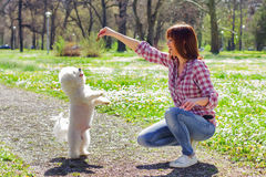 Happy Woman Enjoying Nature With Her Dog Stock Image