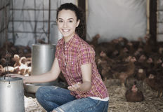 Happy woman farmer giving feeding stuff Stock Images