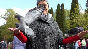 A happy woman feeding several doves from her hands in slo-mo. An amazing view of a happy woman feeding several grey doves from her hands in slow motion. She stock footage