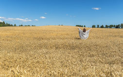 Happy woman among a field of ripening rye Stock Images