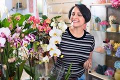 Happy  woman florist showing  multicolored phalaenopsis flowers Stock Photos