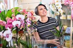 Happy  woman florist showing  multicolored phalaenopsis flowers Stock Photo
