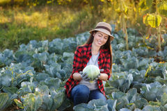 Happy woman gardener with cabbage. Happy young woman gardener with cabbage in garden. Young farmer harvesting cabbage. Gardening, agriculture, autumn harvest Royalty Free Stock Photography
