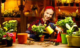 Happy woman gardener transplants and watering flowers Stock Image