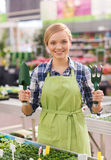 Happy woman with gardening tools in greenhouse Stock Image