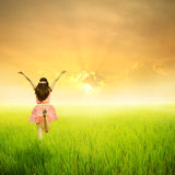 Happy woman in green rice field and sunset Royalty Free Stock Images