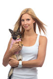 Happy woman hold in hands small Chihuahua dog or puppy Stock Photos