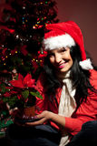 Happy woman holding Christmas flower Stock Photos
