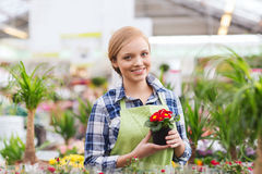 Happy woman holding flowers in greenhouse Royalty Free Stock Photography