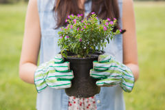 Happy woman holding potted flowers Royalty Free Stock Photography