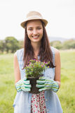 Happy woman holding potted flowers Stock Photo