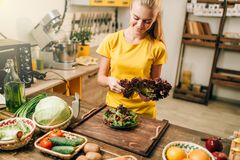Happy woman holding salad, cooking healthy food. Happy woman holding salad on the kitchen, cooking healthy bio food. Vegetarian diet, fresh vegetables and fruits Royalty Free Stock Images