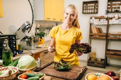 Happy woman holding salad, cooking healthy food. Happy woman holding salad on the kitchen, cooking healthy bio food. Vegetarian diet, fresh vegetables and fruits Stock Images