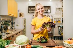 Happy woman holding salad, cooking healthy food. Happy woman holding salad on the kitchen, cooking healthy bio food. Vegetarian diet, fresh vegetables and fruits Stock Photos