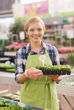 Happy woman holding seedling in greenhouse Royalty Free Stock Photo