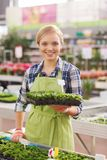 Happy woman holding seedling in greenhouse Stock Photography