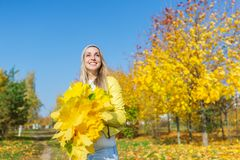 Happy woman holds a bouquet of autumn yellow leaves against the background of an autumn park and of blue sky Royalty Free Stock Photography