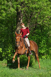 Happy woman on a horse ride in forest Royalty Free Stock Photography