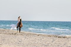 Happy woman with horse on sea background Stock Photography
