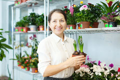 Happy  woman with hyacinth (Hyacinthus) Stock Images