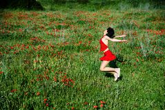 Happy woman jumping in poppy field Stock Photos