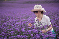 Happy woman in lavender theme park royalty free stock image