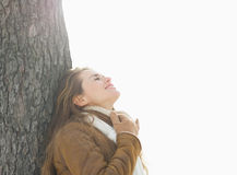 Happy woman leaning against tree in winter park Stock Image