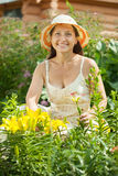Happy  woman in lily plant Stock Images