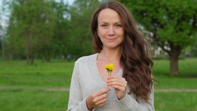 Woman with small dandelions in hands in countryside. Happy woman with long wavy hair and small tender dandelions. Portrait of romantic woman in countryside stock video