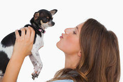Happy woman looking at her chihuahua Royalty Free Stock Images