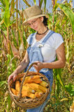 Happy woman with maize basket Stock Photos