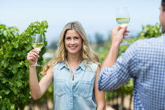Happy woman with man holding wineglass. At vineyard Stock Photography