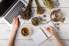 Happy woman with medicinal herbs brewing herbal tea royalty free stock image