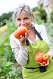 Happy woman outdoor showing splendid tomatoes Royalty Free Stock Image