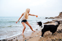 Happy woman playing with dog and having fun on beach. Happy attractive young woman playing with dog and having fun on the beach Stock Image