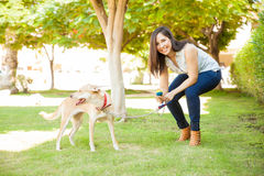 Happy woman playing with her dog. Portrait of a gorgeous young Hispanic woman crouching next to her dog and playing with a ball at a park Stock Photos