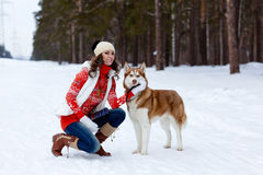 Happy woman playing with siberian husky dog in winter forest Stock Photos