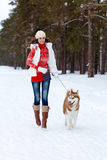 Happy woman playing with siberian husky dog in winter forest Stock Images