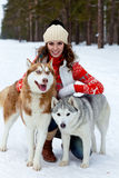 Happy woman playing with siberian husky dogs in winter forest Royalty Free Stock Images