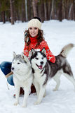 Happy woman playing with siberian husky dogs in winter forest Stock Photos