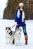 Happy woman playing with siberian husky dogs in winter forest Stock Photo
