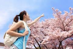 Happy woman pointing to sakura tree Stock Photos
