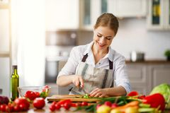 Happy woman preparing vegetable salad in kitchen royalty free stock image