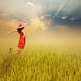 Happy woman in rice field and sunset Royalty Free Stock Image