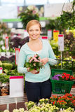 Happy woman with shopping basket choosing flowers Stock Images