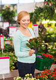 Happy woman with shopping basket choosing flowers Royalty Free Stock Photos