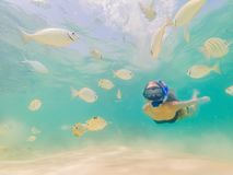 Happy woman in snorkeling mask dive underwater with tropical fishes in coral reef sea pool. Travel lifestyle, water. Sport outdoor adventure, swimming lessons stock photos