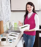 Happy woman with  sprouts Stock Image
