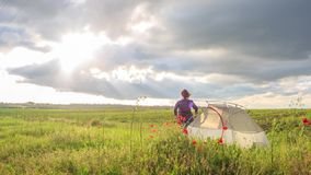 Happy woman stands on sunset flower field near travel tent with her hands up stock video