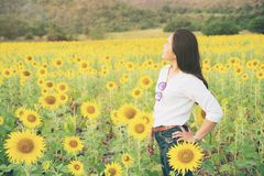 Happy woman in sunflower field smiling with happiness. Due to healthy food. Happy people, health care and agriculture business concept. Happy farmer or farm Stock Image